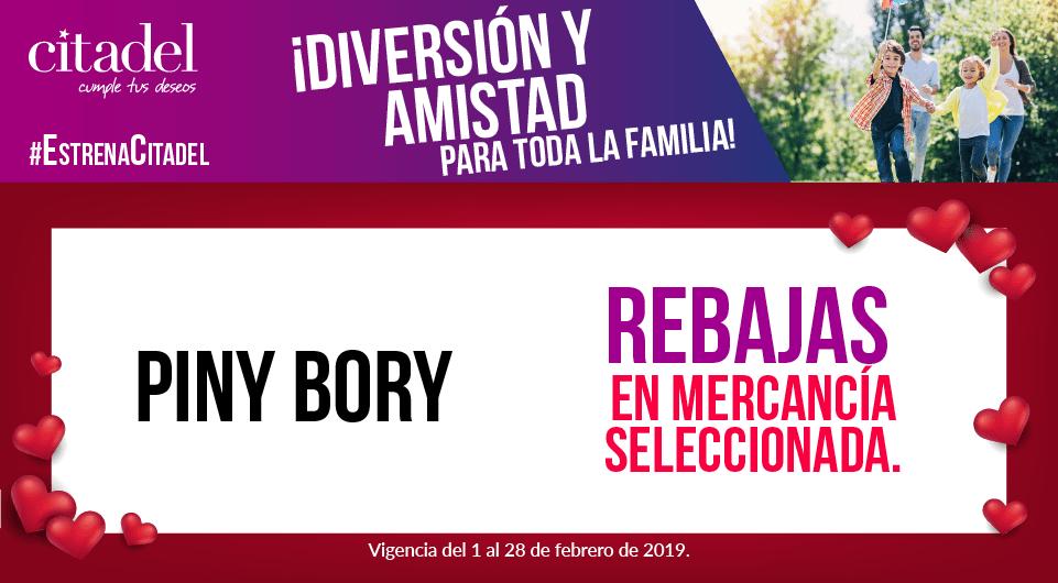 FEB PROMOS_web piny bory